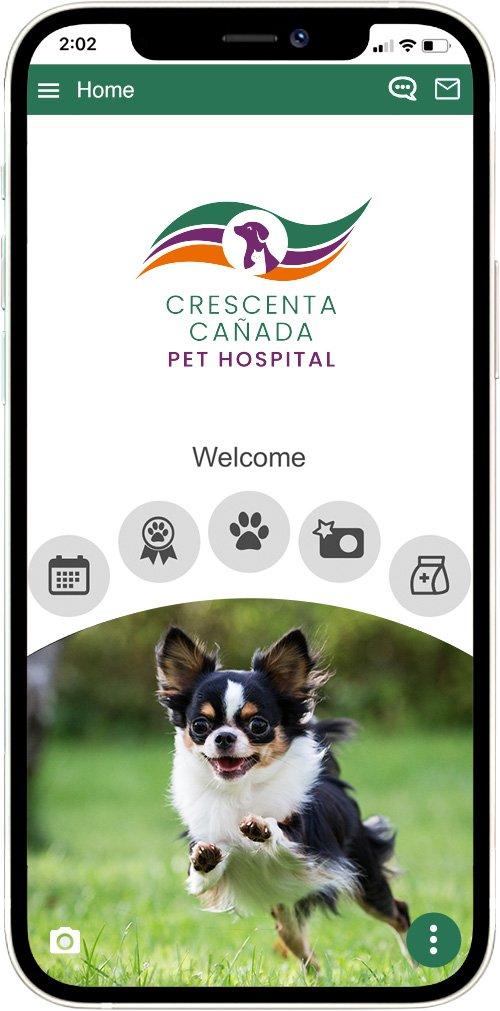Crescenta Canada Pet Hospital