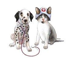 Your Pals Pet Hospital