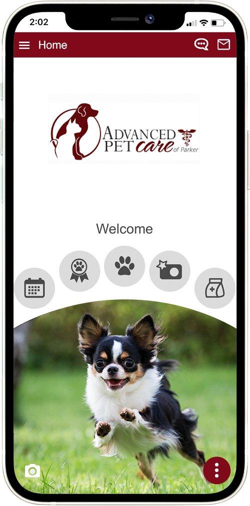 Advanced Pet Care of Parker