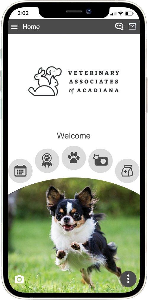 Veterinary Associates of Acadiana