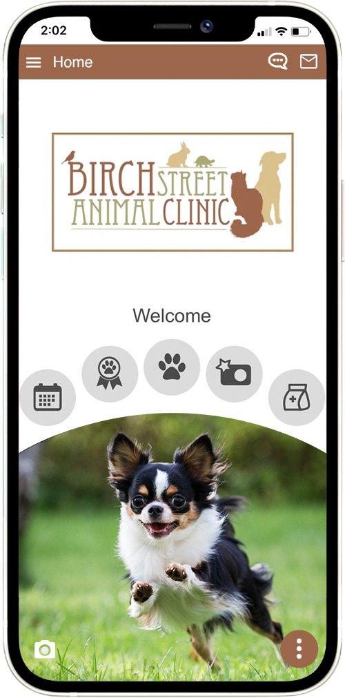 Birch Street Animal Clinic
