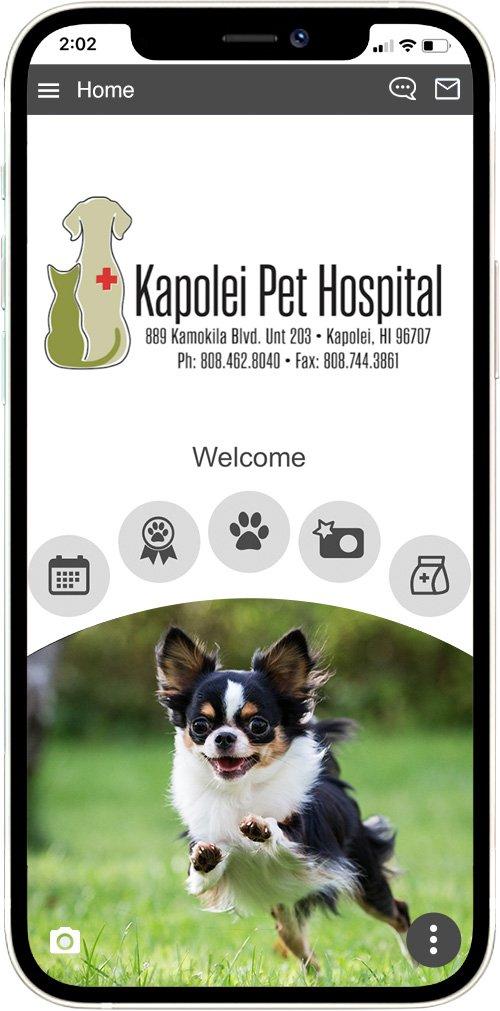 Kapolei Pet Hospital