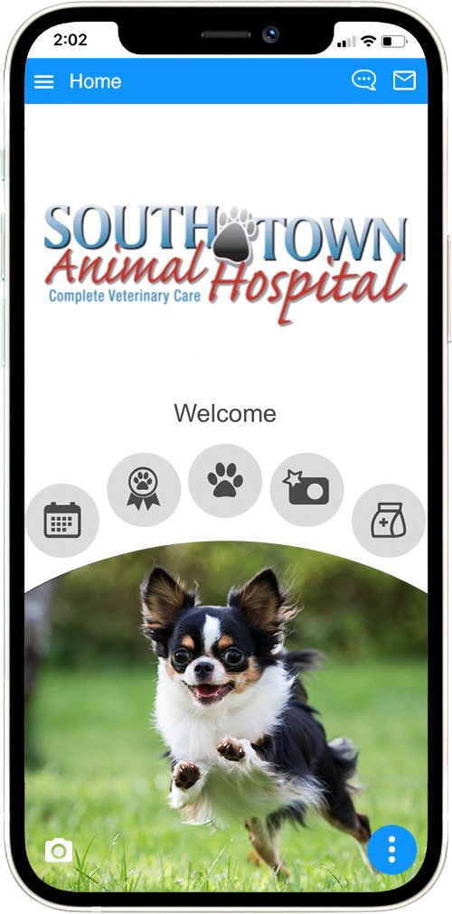 South Town Animal Hospital