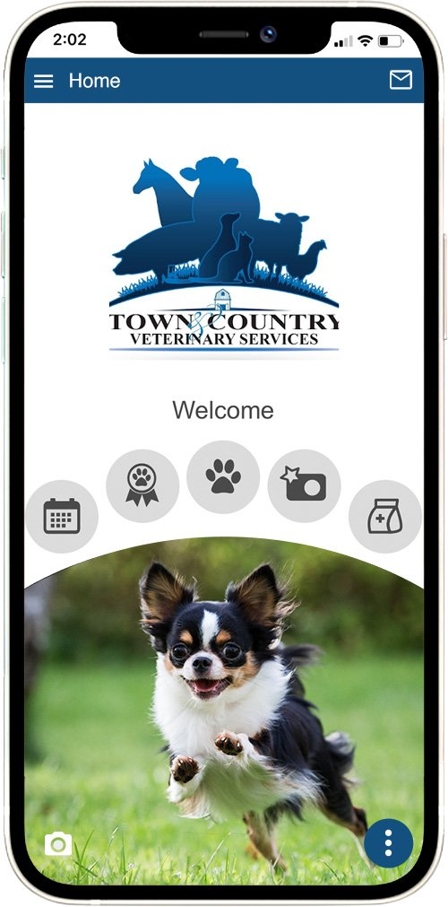 Town and Country Veterinary Svcs