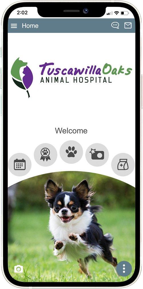 Tuscawilla Oaks Animal Hospital
