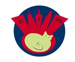 City Kitty Vet Care