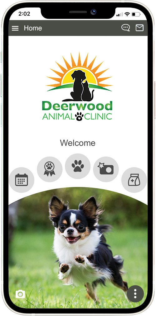 deerwood animal clinic
