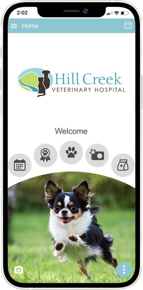 Hill Creek Vet