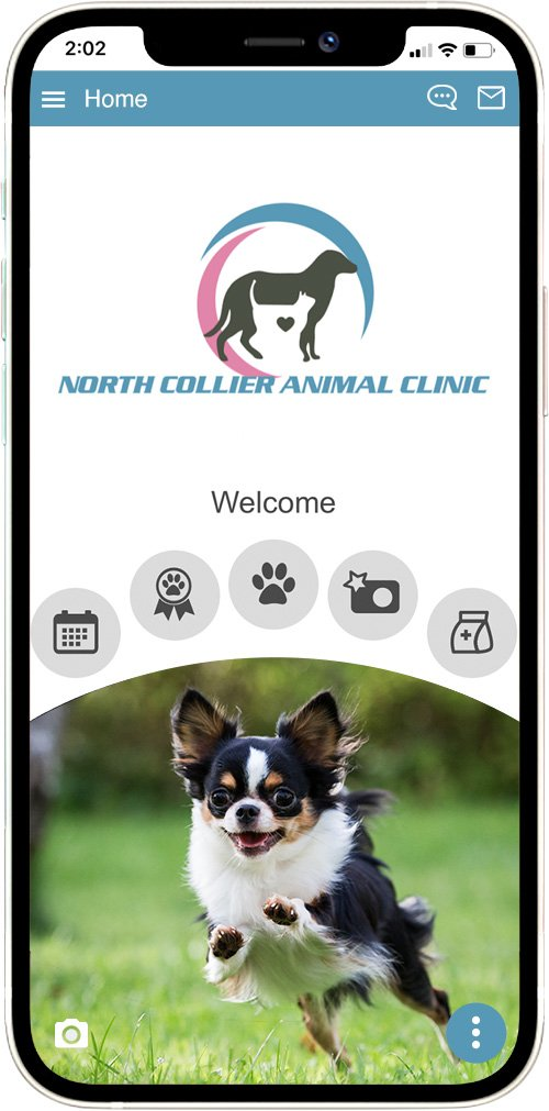 North Collier Animal Clinic