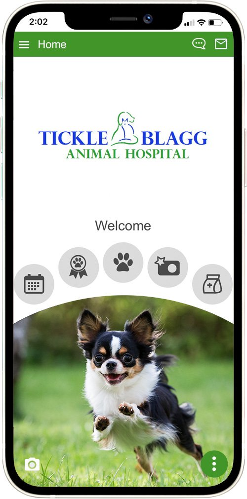 Tickle Blagg Animal Hospital