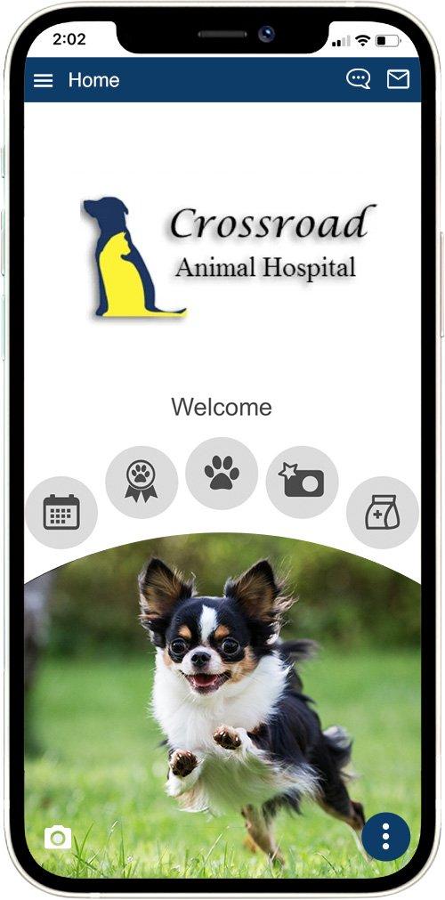 Crossroad Animal Hospital