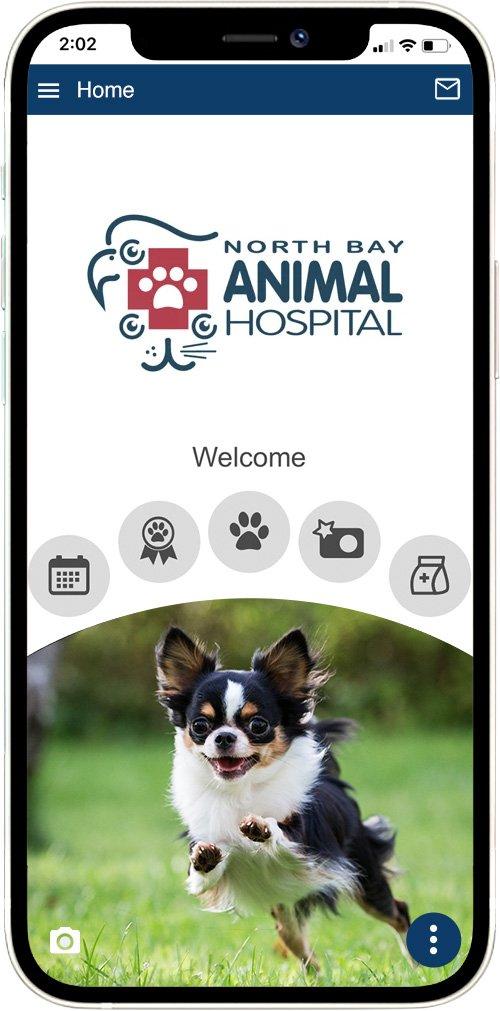 North Bay Animal Hospital