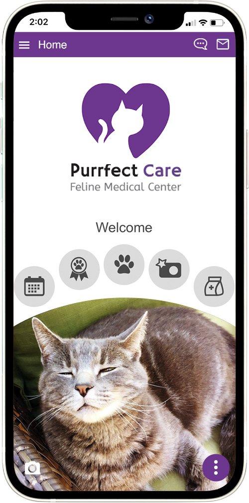 Purrfect Care Feline