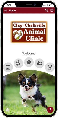 Clay-Chalkville Animal Clinic