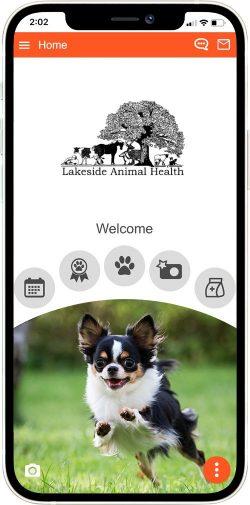 Lakeside Animal Health