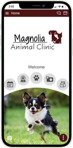 Magnolia Animal Clinic