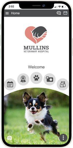 Mullins Veterinary Hospital