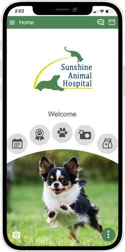 Sunshine Animal Hospital