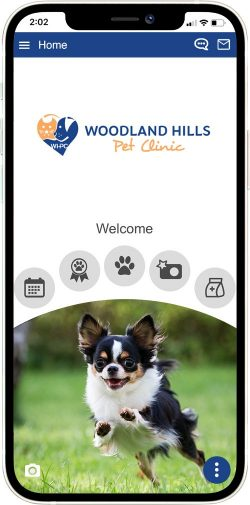 Woodland Hills Pet